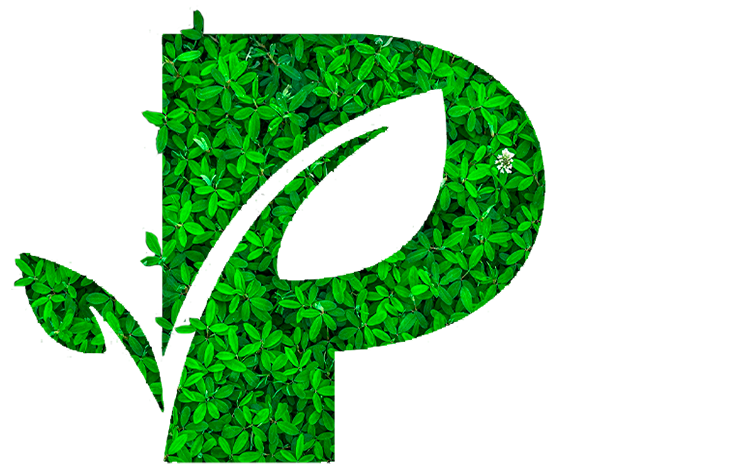 P-logo-fleuri